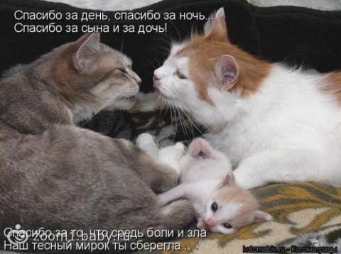 улыбнуло))))