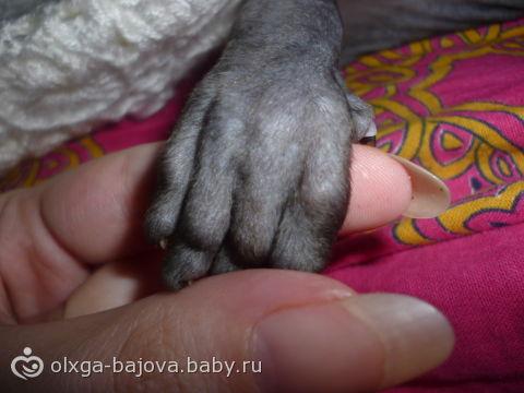 кто нибудь угадает что это у меня в руках?))))